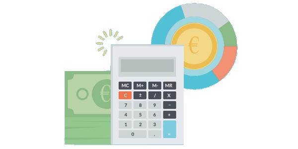 Budget - Majoie S.r.l.